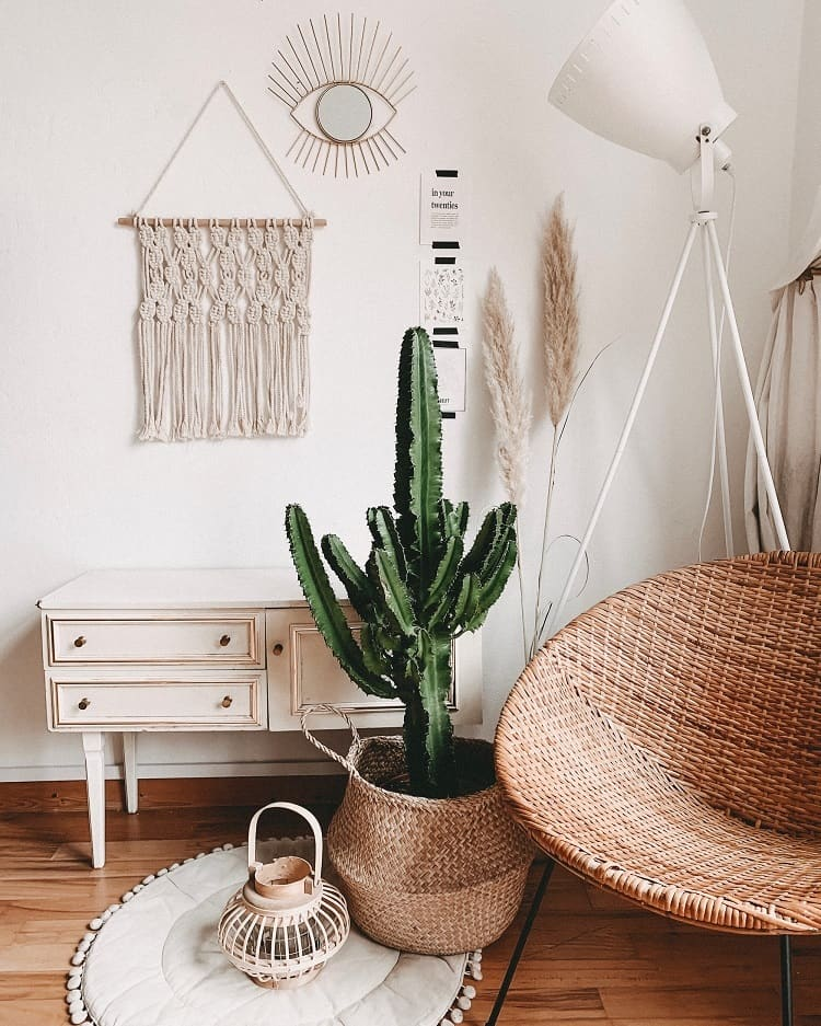 cozy-interiors-plant-and-wicker